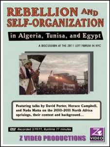 Rebellion and Self-Organization in Algeria, Tunisia, and Egypt