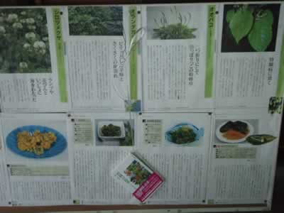Bulletin of Field Plant Eating Guide in Japanese